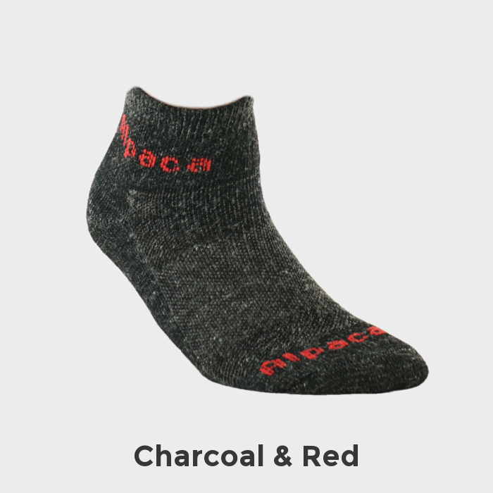 Exotic_Fibers_of_Canada_Alpaca_Sock_Sport_Ankle_Socks_Charcoal_Red_Feature