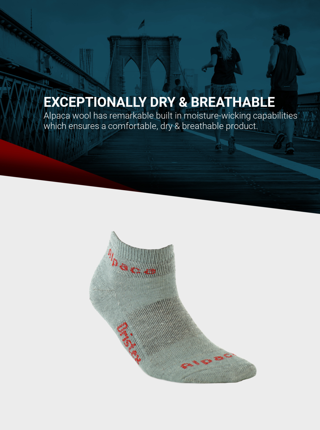 Exotic_Fibers_of_Canada_Alpaca_Sport_Ankle_Socks_Running_Mobile_2