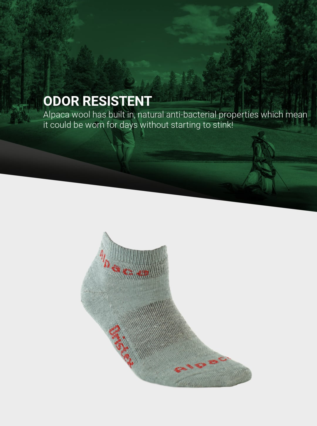 Exotic_Fibers_of_Canada_Alpaca_Sport_Ankle_Socks_Golf_Mobile 2