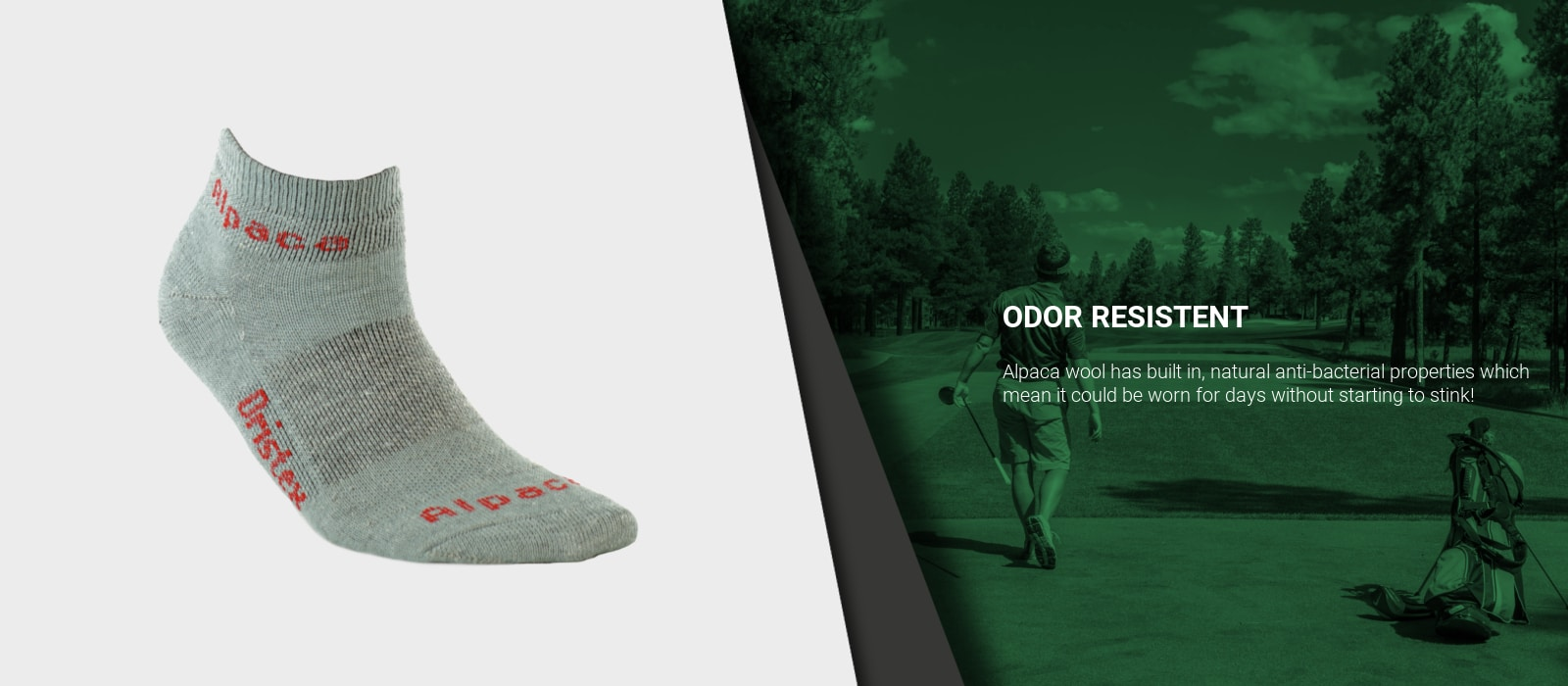 Exotic_Fibers_of_Canada_Alpaca_Sport_Ankle_Socks_Golfing 2